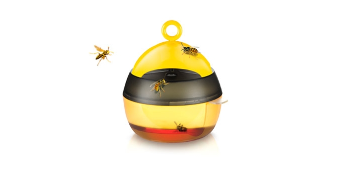 Wespenfalle
